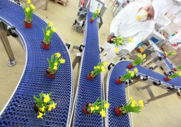 Industria, automatización, robótica, química…